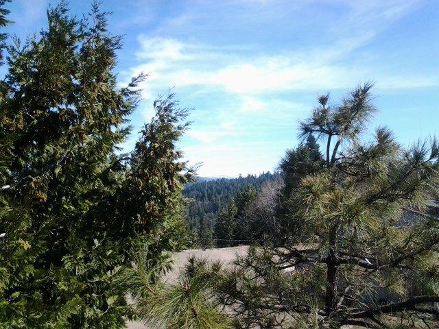 Crystal Range, Sierra Nevada Mtns,  Pollock Pines, CA  Thanks Diane!